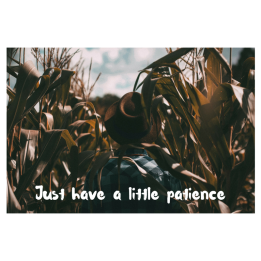 Just have a little patience