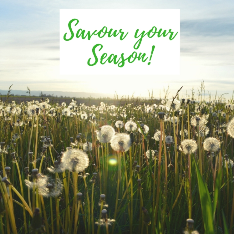 Savour your Season
